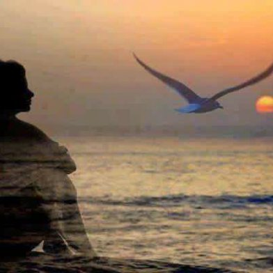 More Silence, More Peace
